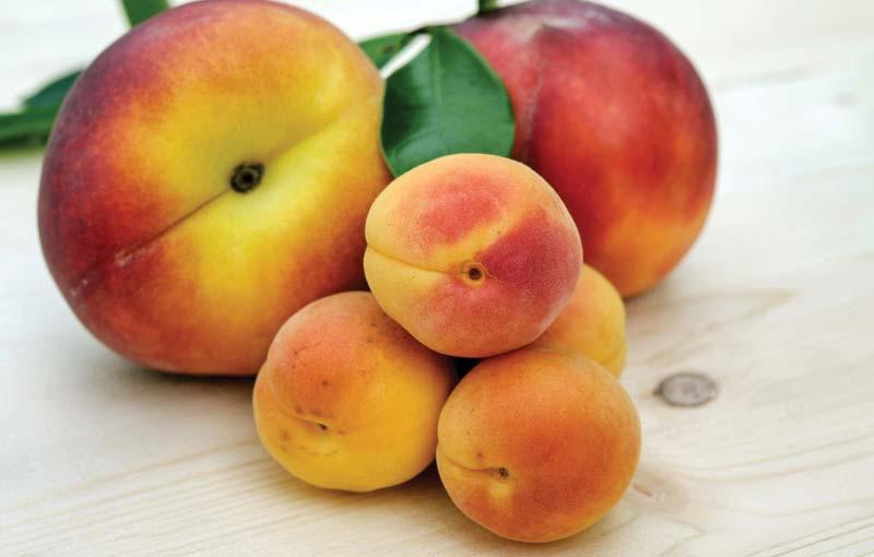 Peaches-Fruit-Produce Image