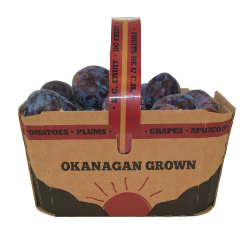 Black Plums Okanagan Grown