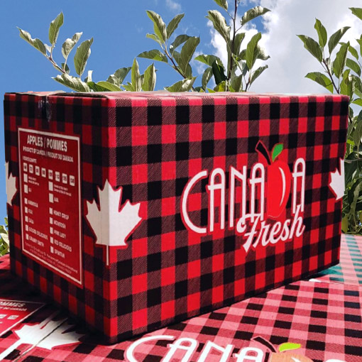 Apple-Box-Canada-Fresh