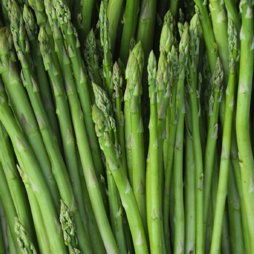 Asparagus Grown in Canada Available April - June