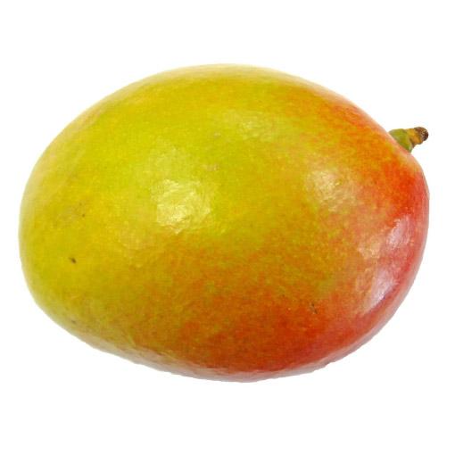 Haden-Mango-Mexico