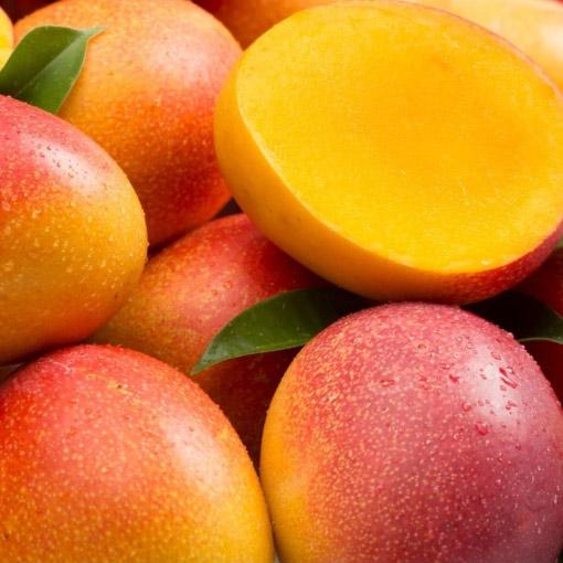 Kent-Mangos