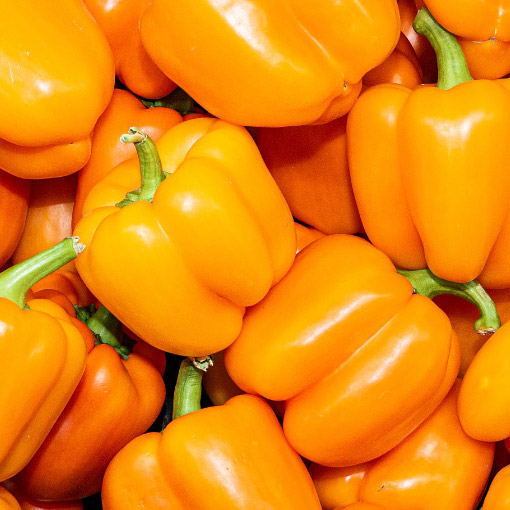 Orange-Bell-Peppers